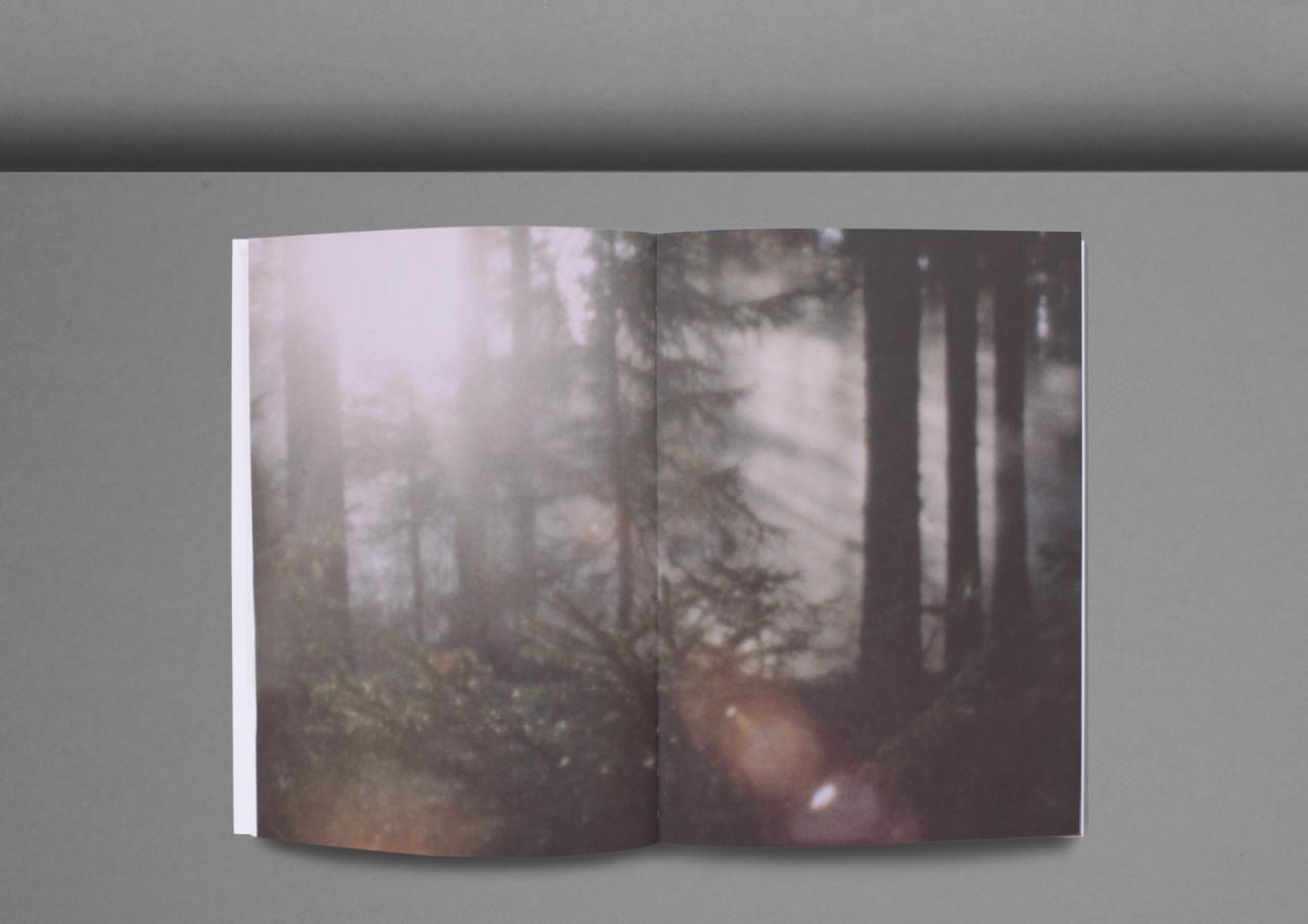 Ur_skogen-4
