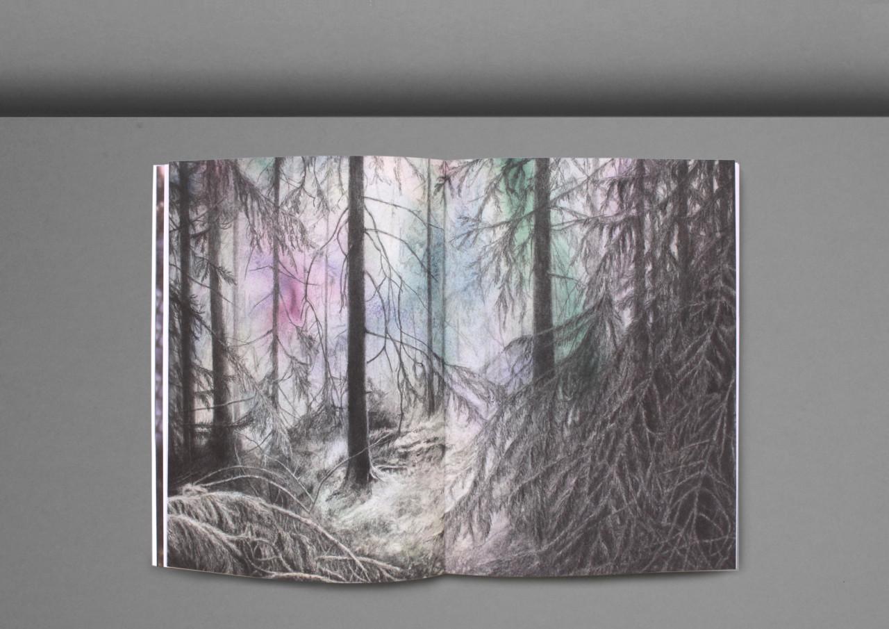Ur_skogen-9
